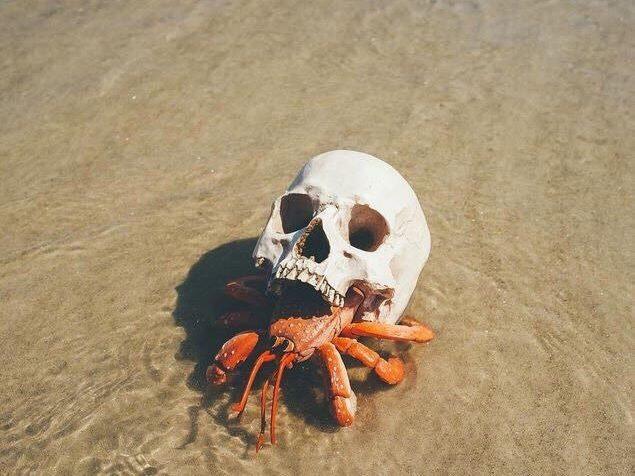 skullwoman